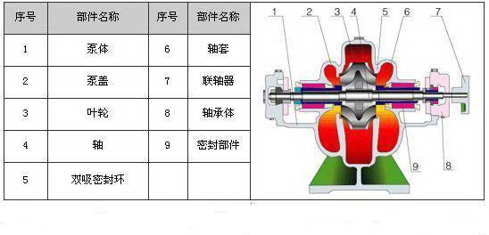 中开泵结构图(S型单级双吸中开泵)